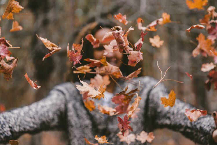 Plaatje herfst bladeren laten zien
